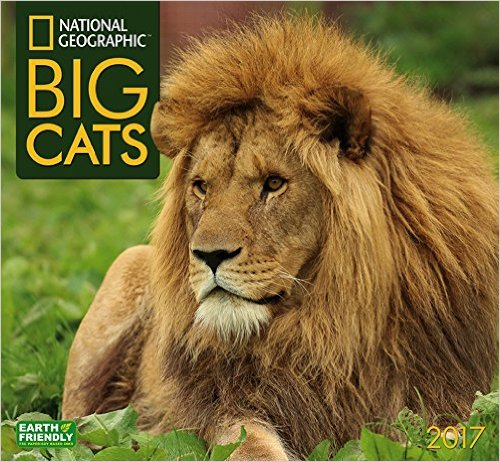 National Geographic Big Cats Calendar 2017