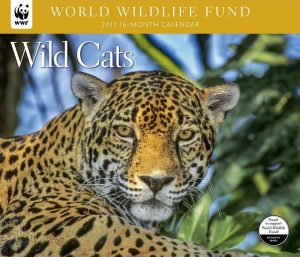 World Wildlife Fund Wild Cats Calendar 2017
