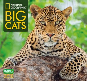 NatGeo Big Cats 2018 Wall Calendar