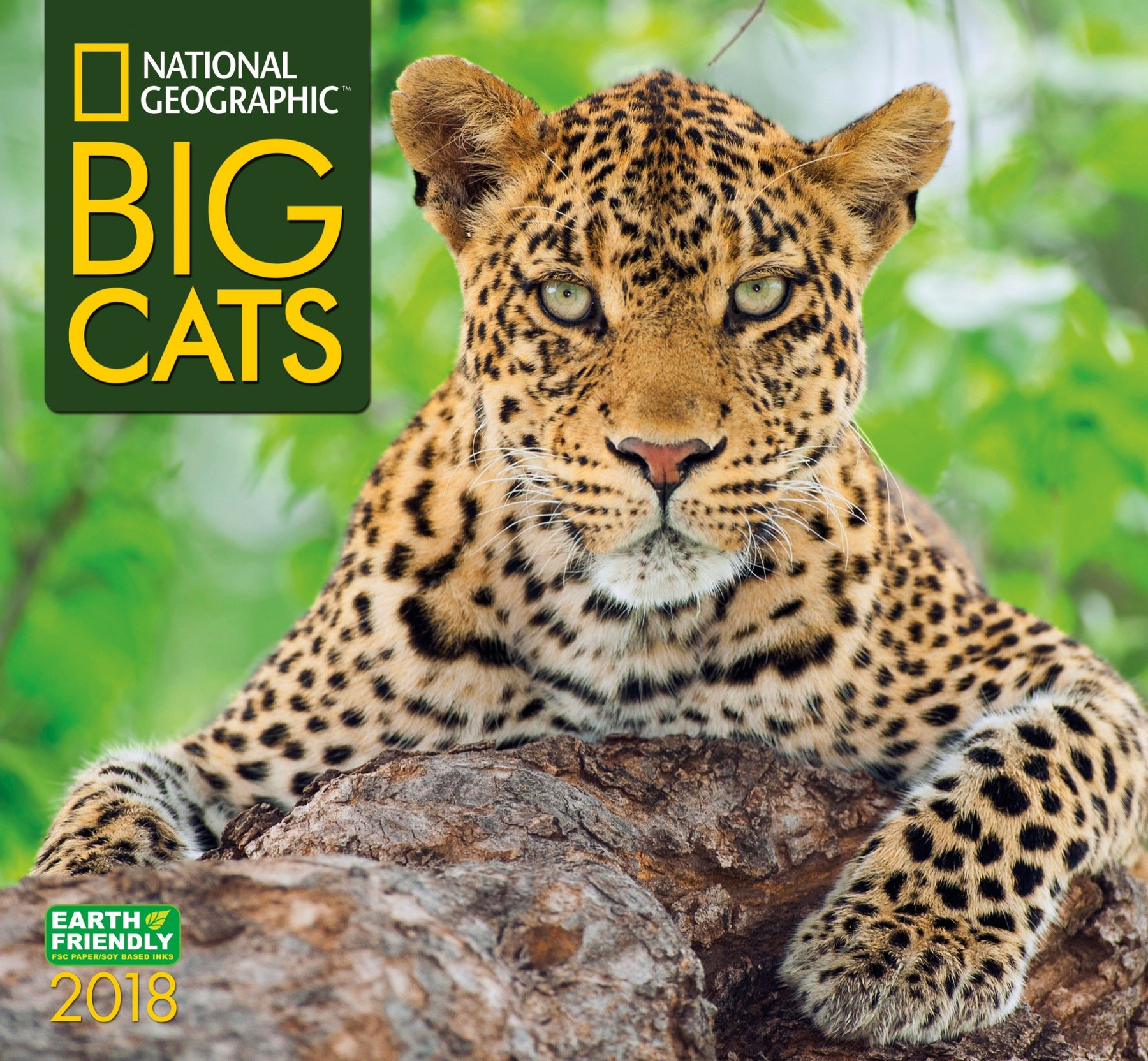 Nat Geo Big Cats 2018 Wall Calendar