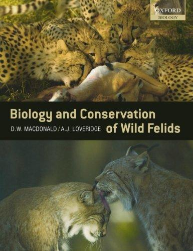 Biology and Conservation of Wild Felids by D. Macdonald and A. Loveridge 2010