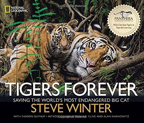 Tigers Forever by Winter and Guynup