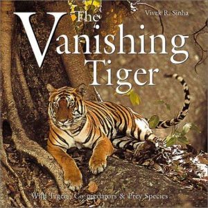 The Vanishing Tiger 2003