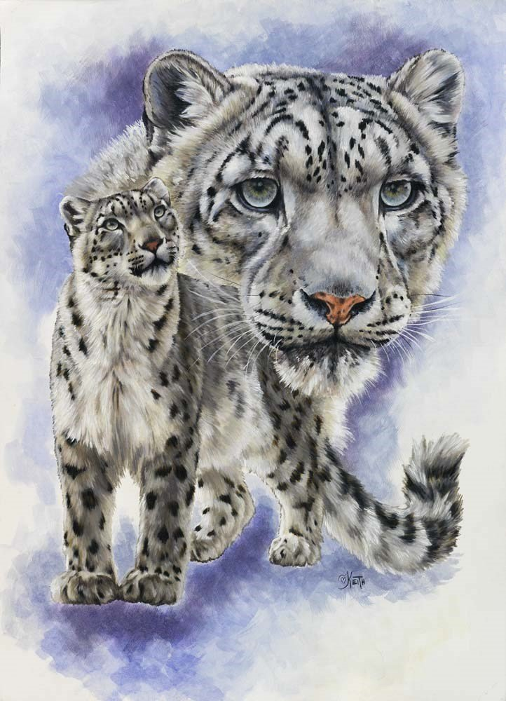 Snow Leopard Art - Dazzler by Barbara Keith