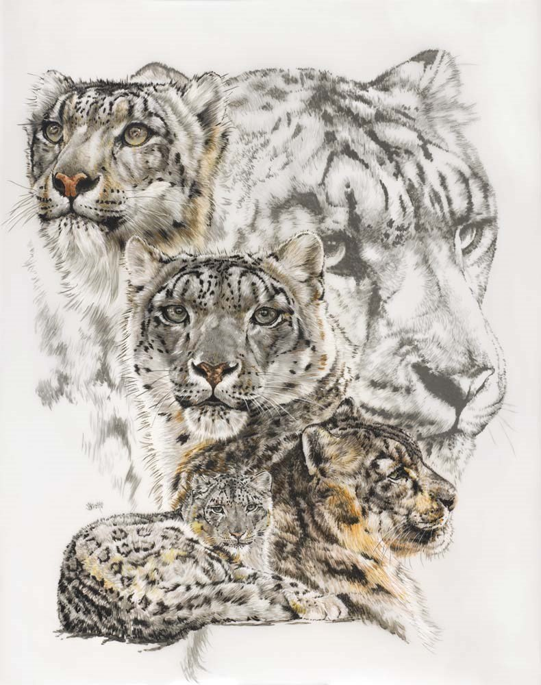 Snow Leopard Art Print by Barbara Keith