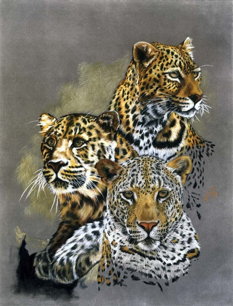 Leopard Art - Shadow Hunter by Barbara Keith