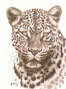 Leopard Art - Potency by Barbara Keith