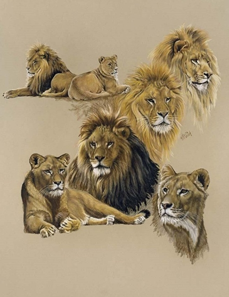 Lion Art - Golden Days by Barbara Keith