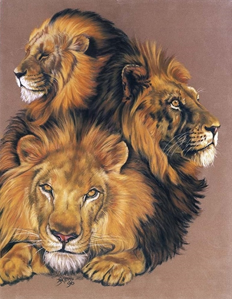 Lion Art - Shades of Amber by Barbara Keith