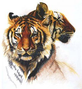 Tiger Art by Barbara Keith