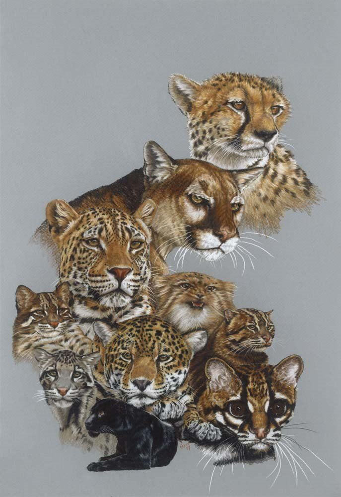 Big Cats Fine Art - Awesome by Barbara Keith