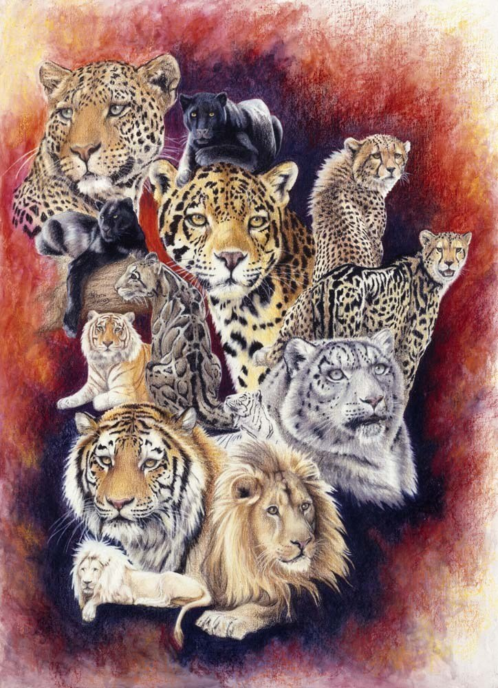 Big Cats Poster - Baker's Dozen by Barbara Keith
