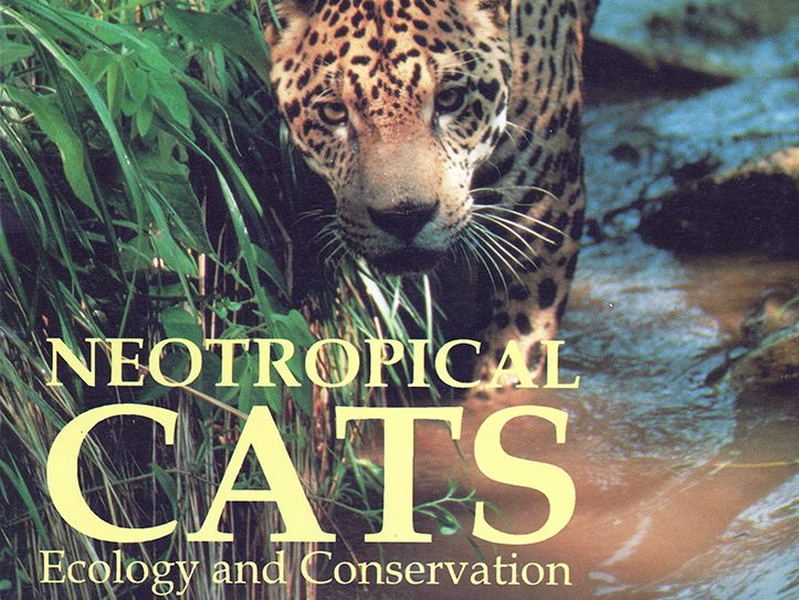 Neotropical Cats by TG de Oliveira 1994