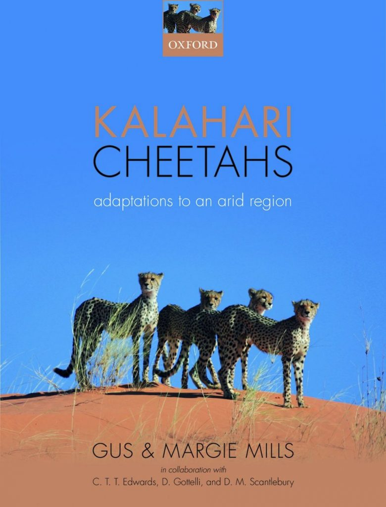 Kalahari Cheetahs: Adaptations to an Arid Region