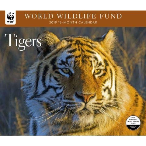 World Wildlife Fund Tigers Calendar 2019
