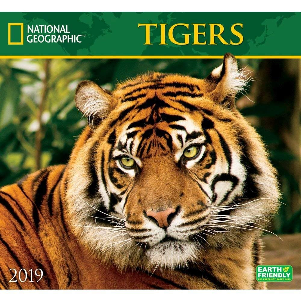 Nat Geo Tigers 2019 Wall Calendar