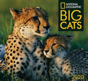 Nat Geo Big Cats Calendar 2020