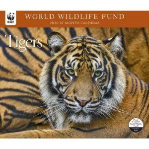 WWF Tigers Wall Calendar 2020