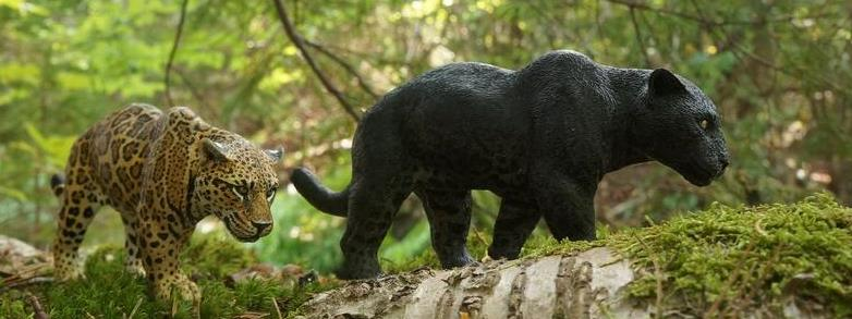 Jaguar Sculptures