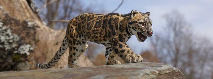 Sunda Clouded Leopard Sculpture