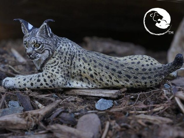 Iberian Lynx Sculpture