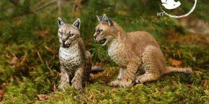 African Golden Cat Sculpture