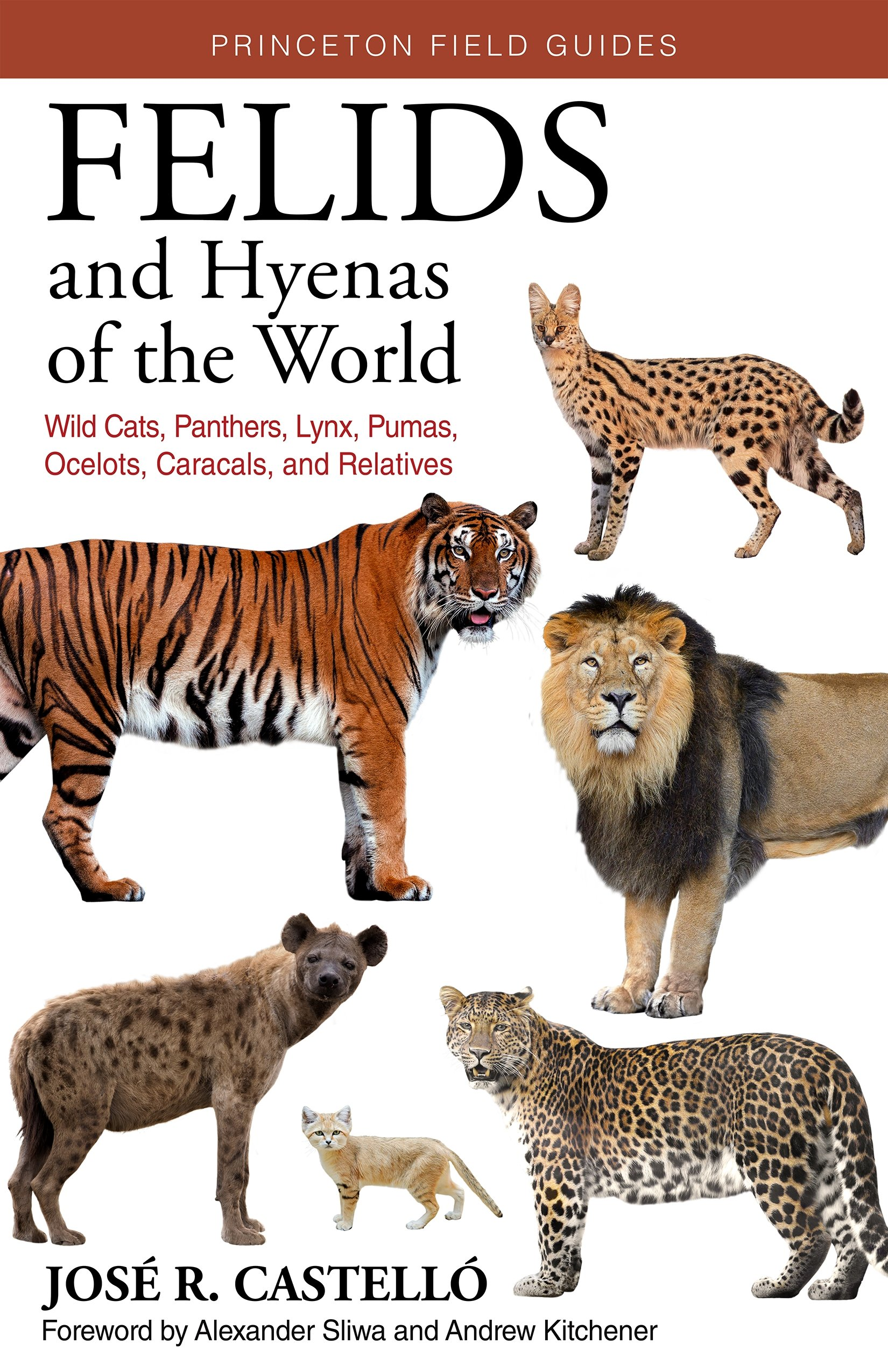 Felids and Hyenas of the World by Jose R. Castello 2020